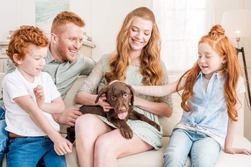 Opinião dianteira a família bonita do ruivo que joga com cachorrinho em casa imagem de stock royalty free