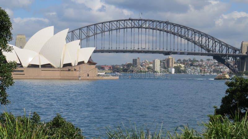 Opinião distante Sydney Harbour fotografia de stock royalty free