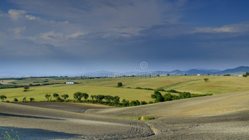 Opinião do campo de Andalucian no início do verão foto de stock royalty free