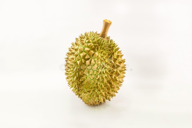 Opinião do close-up do durian isolada no fundo branco, rei de t fotografia de stock