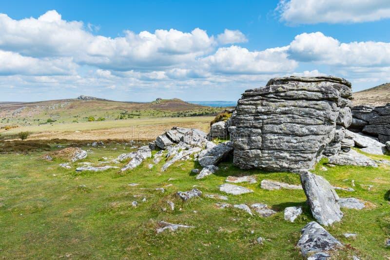 Opinião do close up dos afloramento da terra firme do granito no Tor superior, parque nacional de Dartmoor, Devon, Reino Unido, e imagens de stock royalty free