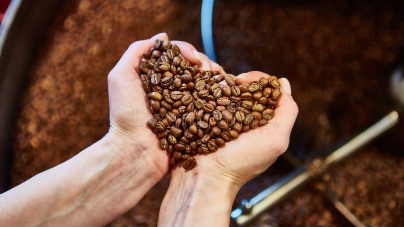 Opinião do close-up feijões de café roasted à disposição fotografia de stock royalty free