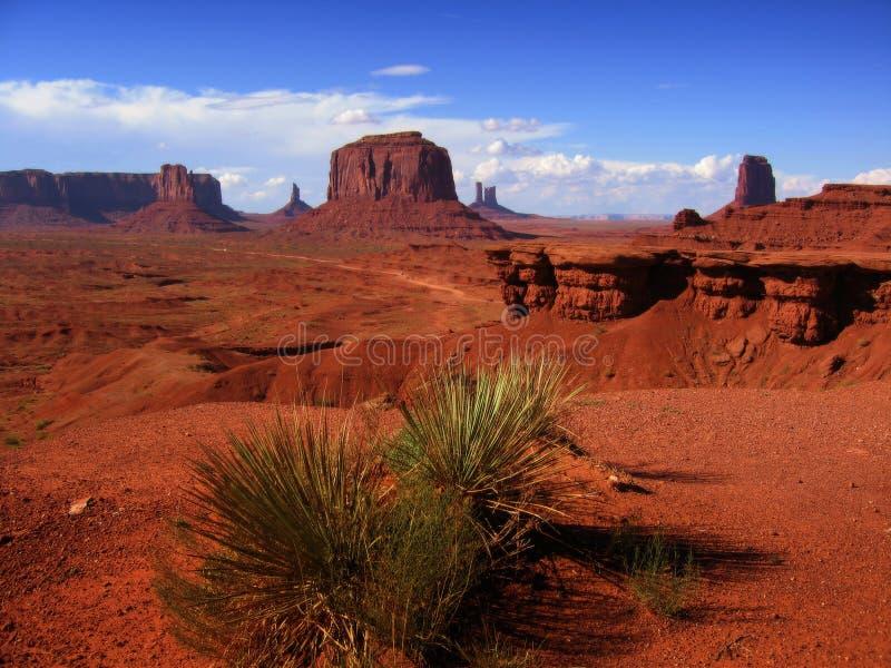 Opinião do deserto foto de stock royalty free