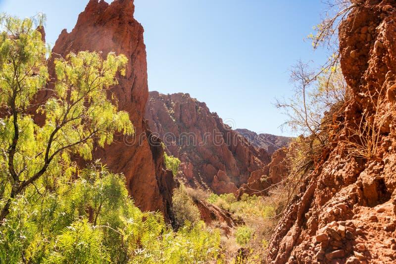 Opinião do deserto perto de Tupiza, Bolívia imagens de stock