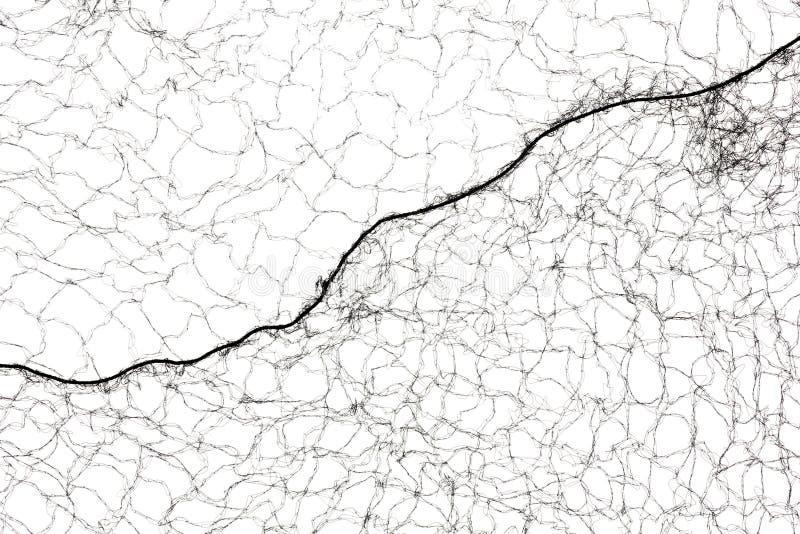 Opinião do fim da rede de cabelo preto imagem de stock