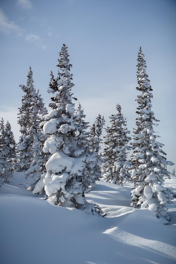 Opinião do inverno de Sheregesh fotografia de stock royalty free