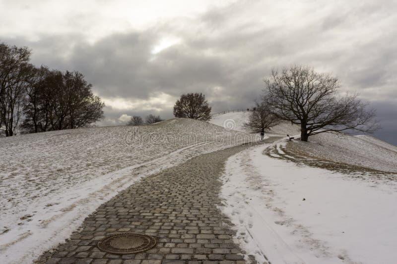 Opinião do inverno em Olympiapark Munich Munchen Alemanha fotos de stock royalty free