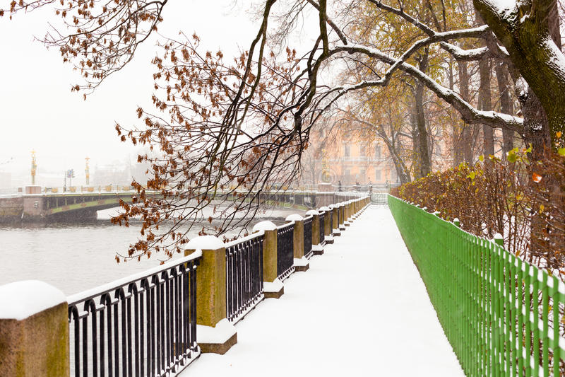 Opinião do inverno no parque foto de stock royalty free