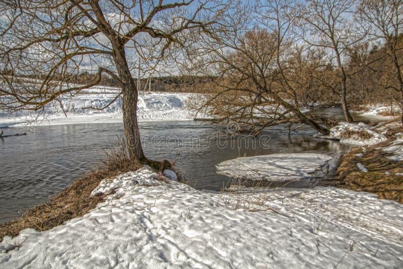 Opinião do inverno do rio de Nara Região de Kaluga foto de stock royalty free