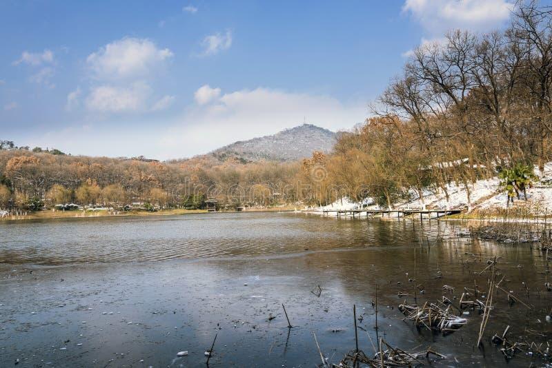 Opinião do lago imagem de stock