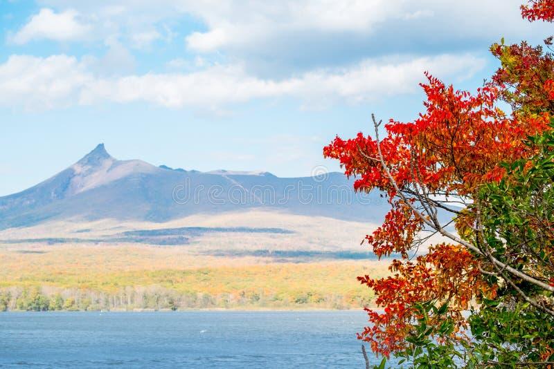 Opinião do lago da estação do outono no parque nacional de hakodate do lago, montagem Komagatake, Hokkaido, Japão imagens de stock