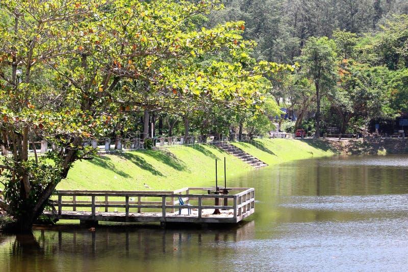 Opinião do lago em Tailândia sul fotos de stock