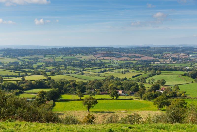 Opinião do leste do campo de Devon dos montes de Blackdown do monte do leste perto de Ottery St Mary fotografia de stock
