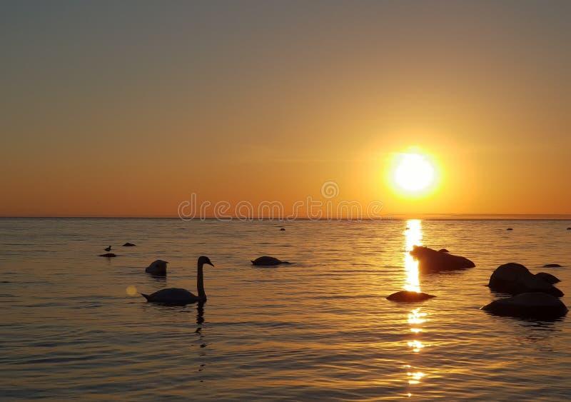 opinião do mar Báltico a KlaipÄ-Dinamarca foto de stock