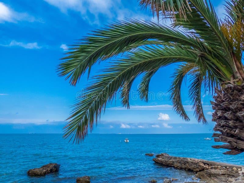 Opinião do mar de Mediterranian com folhas e barcos das palmas foto de stock