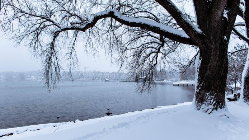Opinião do mar do inverno em Alemanha foto de stock royalty free