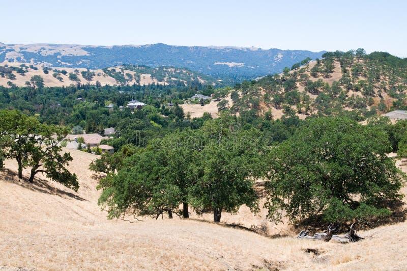 Download Opinião do Mt. Diablo foto de stock. Imagem de scenic - 10058628
