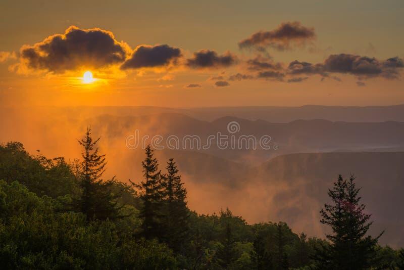 Opini?o do nascer do sol da conserva das rochas do urso em Dolly Sods Wilderness, floresta nacional de Monongahela, West Virginia fotos de stock