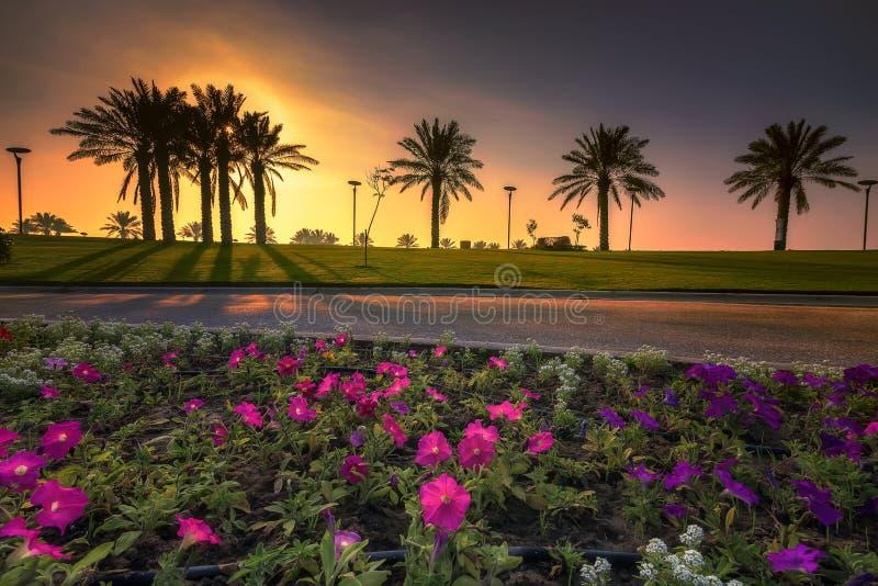 Opinião do nascer do sol do drama da manhã no lago Dammam Arábia Saudita Modon imagem de stock