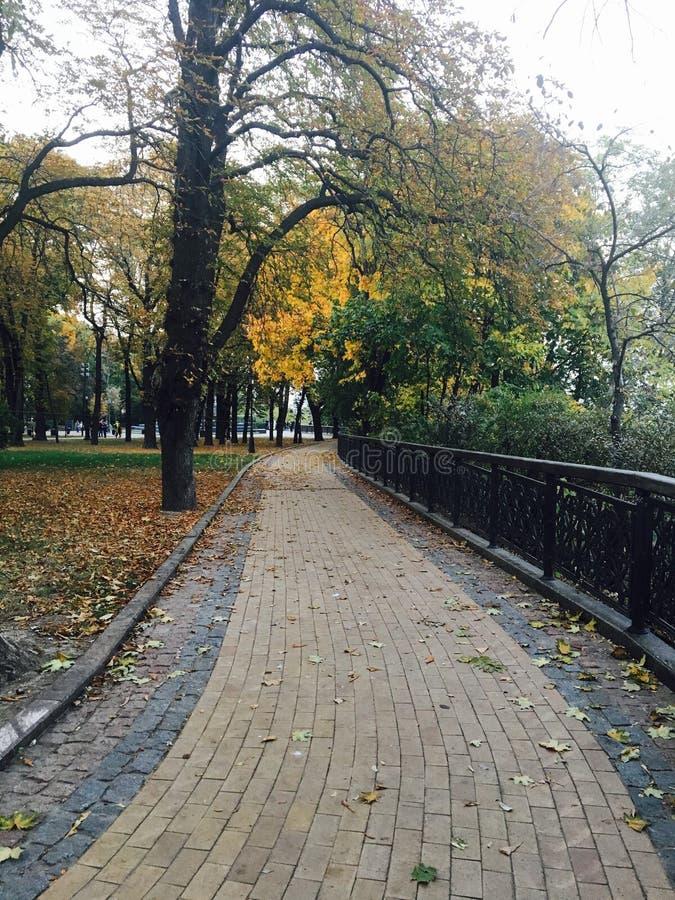 Opinião do outono do parque em Kiev imagem de stock royalty free
