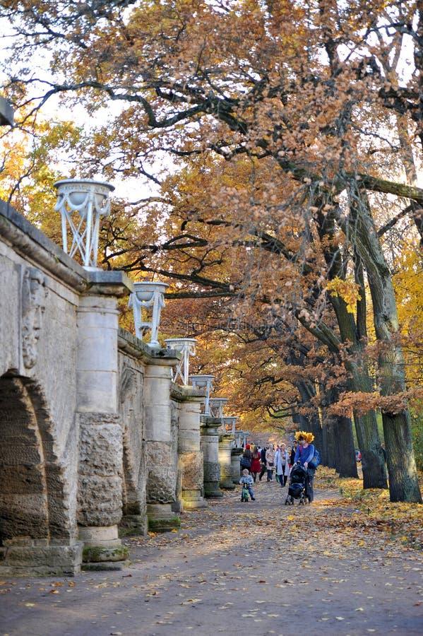 Opinião do outono em Catherine Park em Tsarskoye Selo imagens de stock royalty free