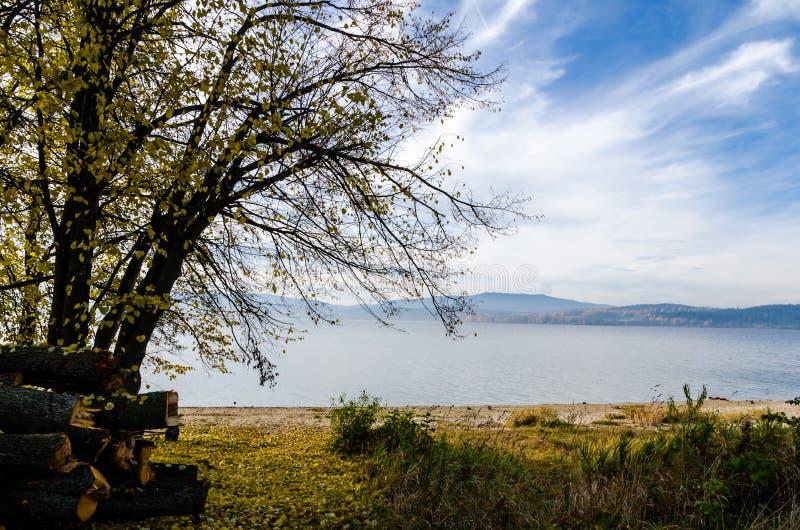 Opinião do outono na costa do lago Lipno fotografia de stock royalty free