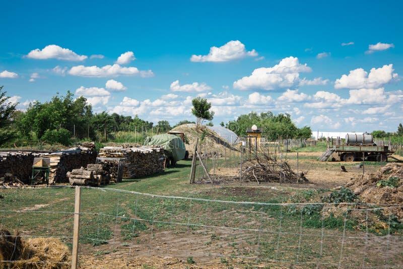 Opinião do pátio traseiro na exploração agrícola rural imagem de stock