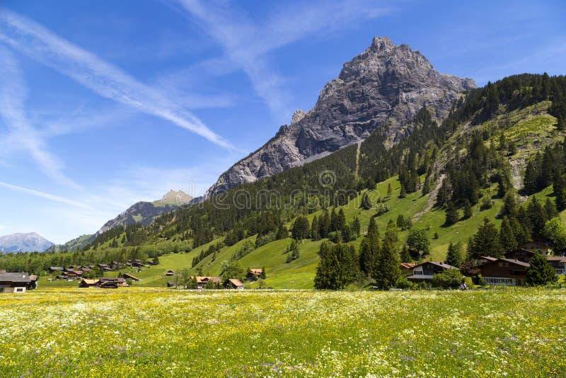 Opinião do panorama dos cumes e do Bluemlisalp no trajeto de caminhada Kandersteg em Suíça imagens de stock royalty free