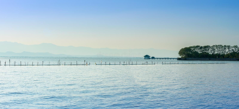 Opinião do panorama o phayao ou Kwan Phayao o maior do pântano foto de stock