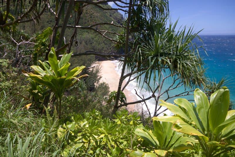 Opinião do peekaboo da praia de Hanakapiai imagem de stock