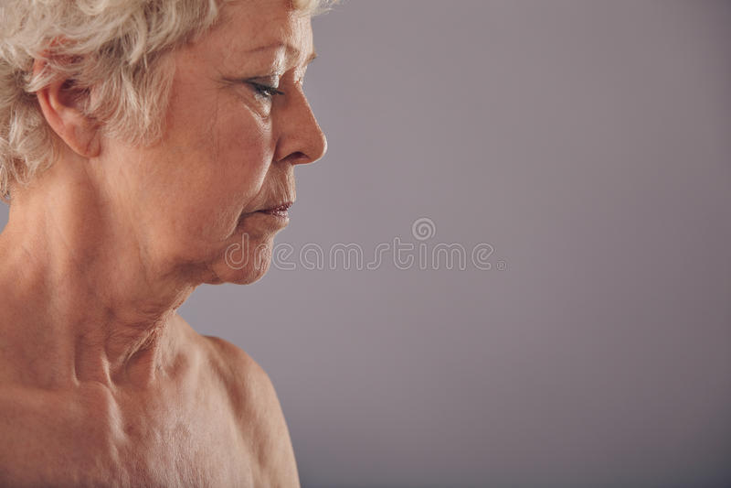 Opinião do perfil da cara superior da mulher fotografia de stock