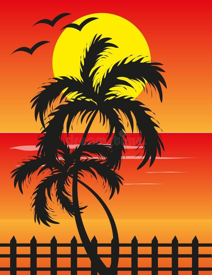 Opinião do por do sol na praia ilustração stock