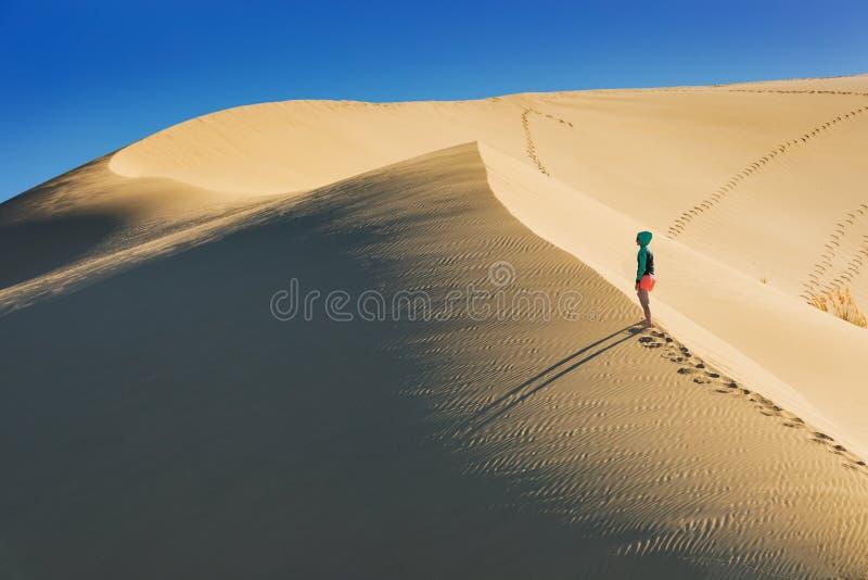 Opinião do por do sol das dunas de areia gigantes de TePaki no cabo Reinga Te Rerenga Wairua, a ponta northwesternmost da penínsu fotos de stock royalty free