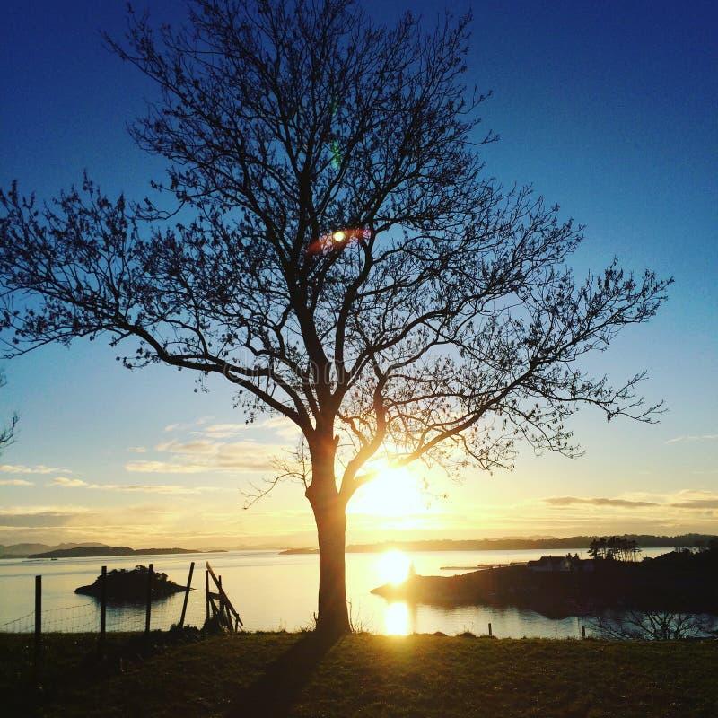 Opinião do por do sol de Noruega, ilha em Talgje foto de stock