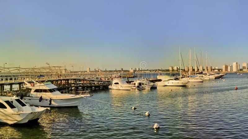 Opinião do porto de Punta del Este fotografia de stock