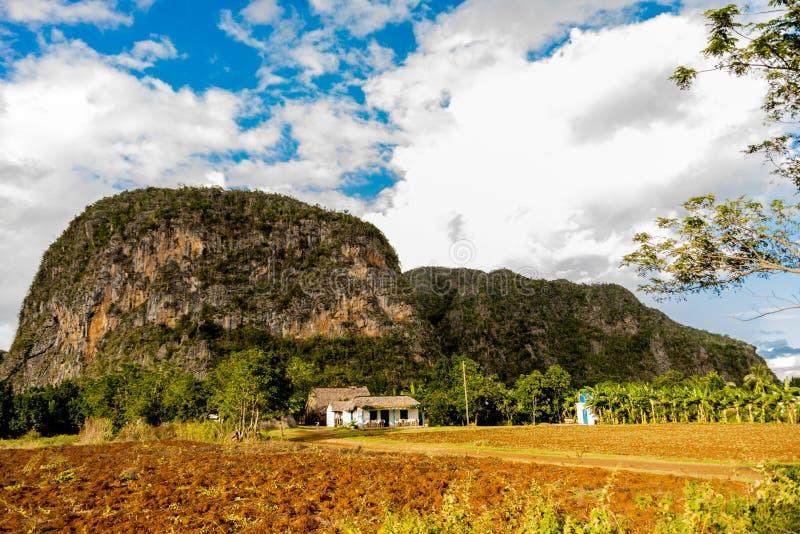 Opinião do vale de Viñales em Cuba Natureza irreal com lagos, montanha, árvores, animais selvagens Céu de Gorgeus fotografia de stock royalty free