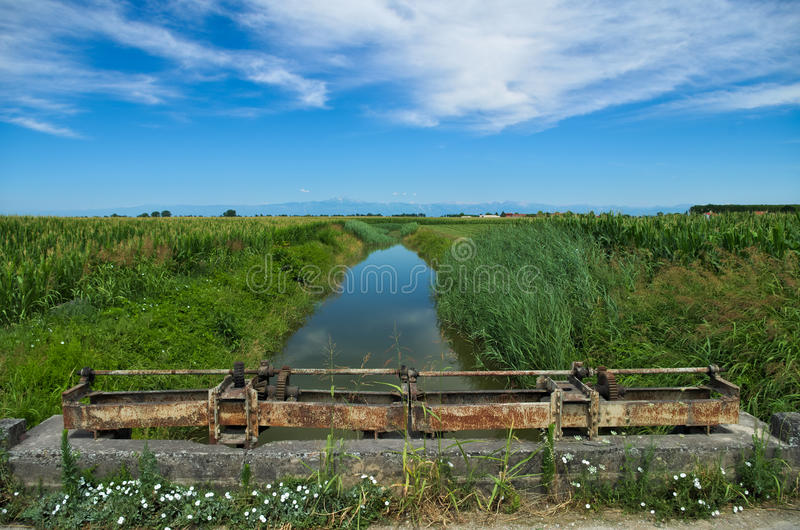 Opinião do verão de um rio quieto na planície Venetian imagens de stock