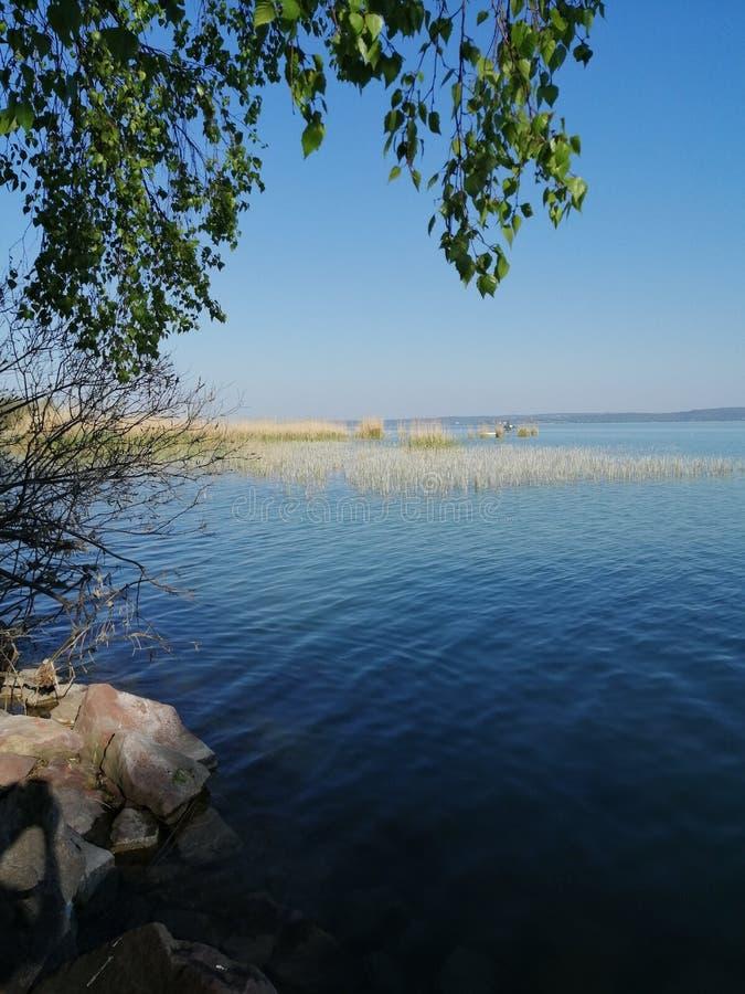Opinião do verão do lago Balaton foto de stock royalty free