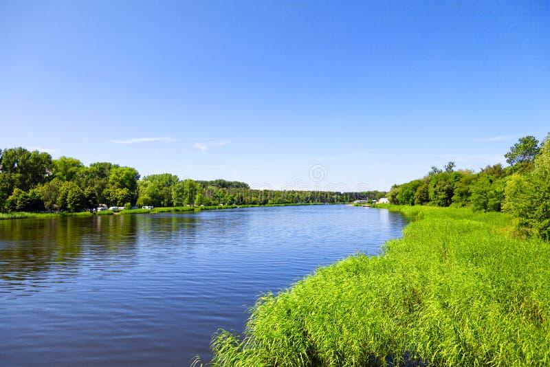 Opinião do verão no lago fotos de stock