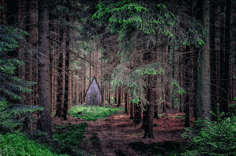 Opinião dramática da paisagem da cabine de madeira nas madeiras fotos de stock royalty free