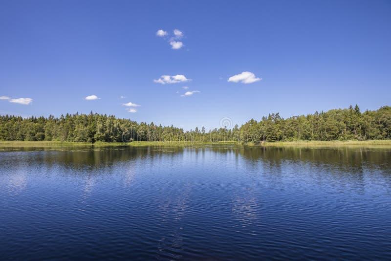 Opinião escandinava do lago imagens de stock royalty free