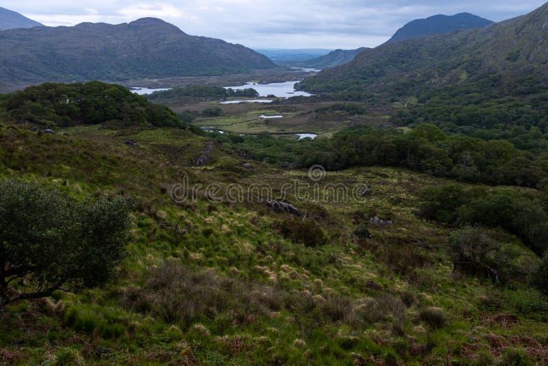 A opinião famosa das senhoras que está no anel do Kerry na Irlanda do parque nacional de Killarney fotos de stock royalty free