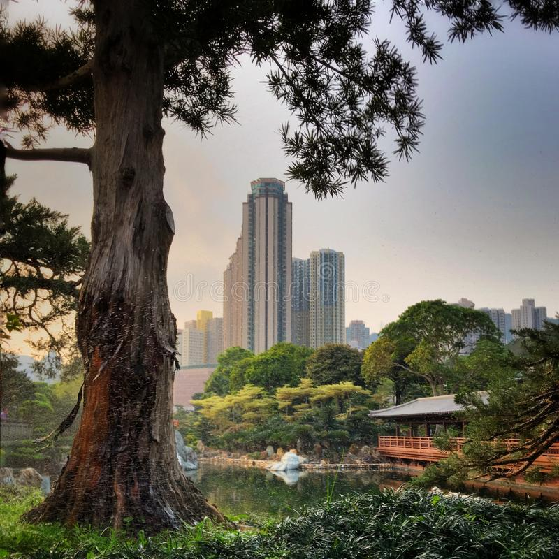 Opinião futurista Hong Kong City Scape de Nan Lian Garden foto de stock