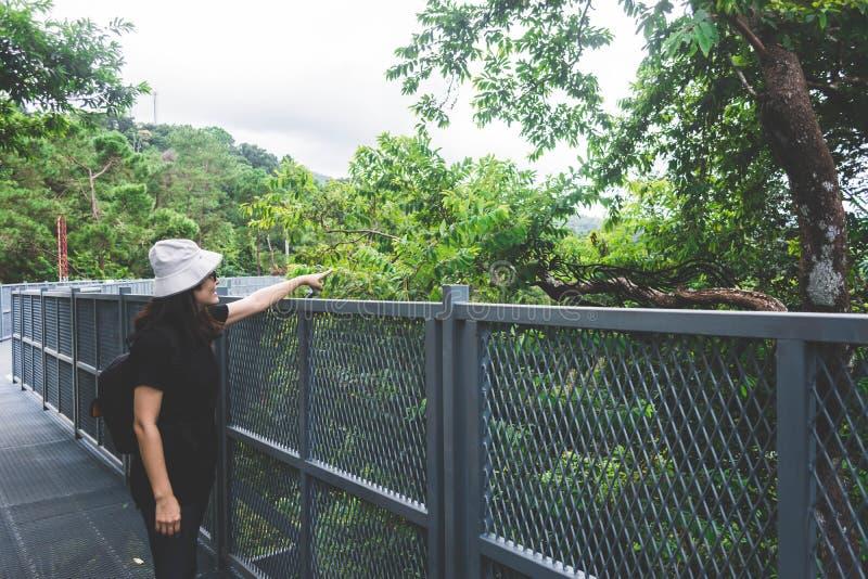 Opinião a jovem mulher que olha a vista da caminhada do céu em Chiangm imagem de stock royalty free