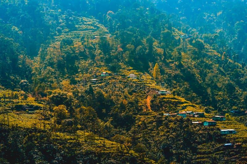 Opinião Kashmir Valley Himalaia da paisagem do panorama, Himalaya, Índia, Ásia imagens de stock