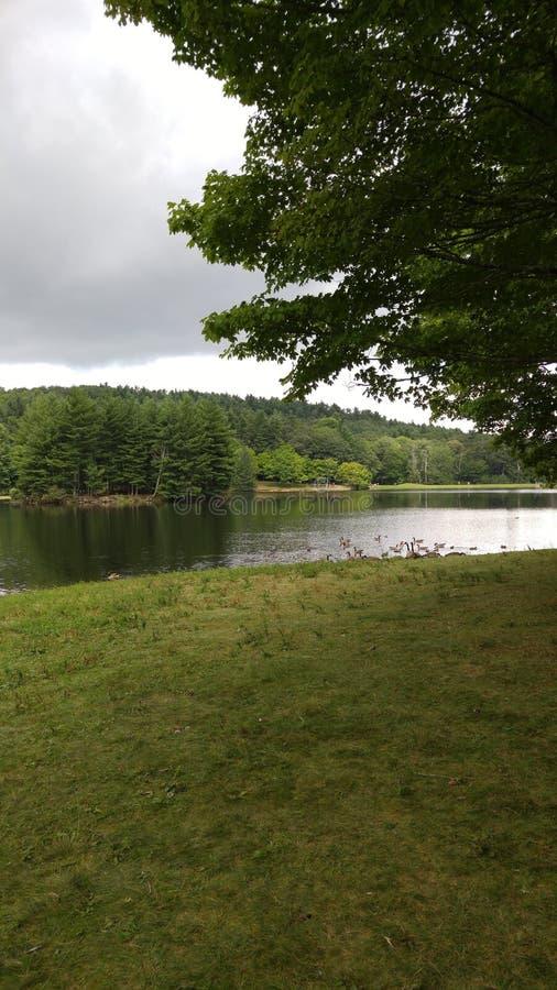 Opinião lateral da lagoa imagem de stock