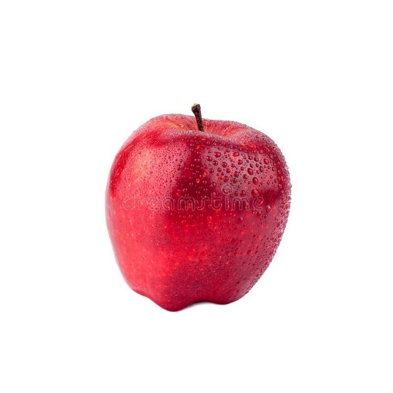 Opinião lateral da maçã vermelha fundo branco no fim isolado acima do macro fotografia de stock royalty free