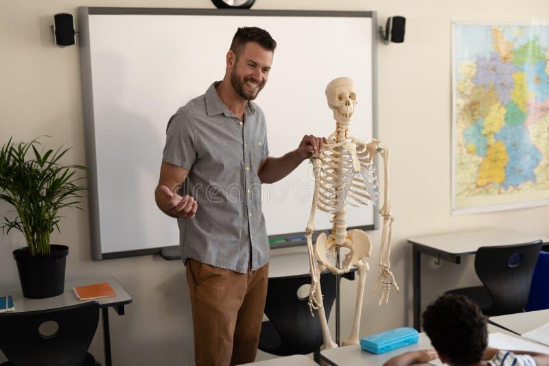 Opinião lateral o professor masculino feliz que explica o modelo de esqueleto humano na sala de aula imagem de stock