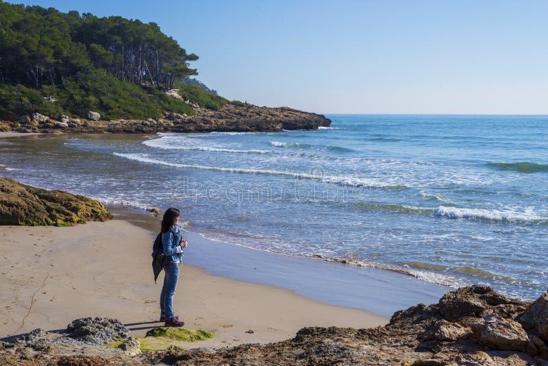 Opinião lateral uma jovem mulher que veste a roupa ocasional que está na praia ao olhar afastado ao horizonte em um dia brilhante imagens de stock royalty free
