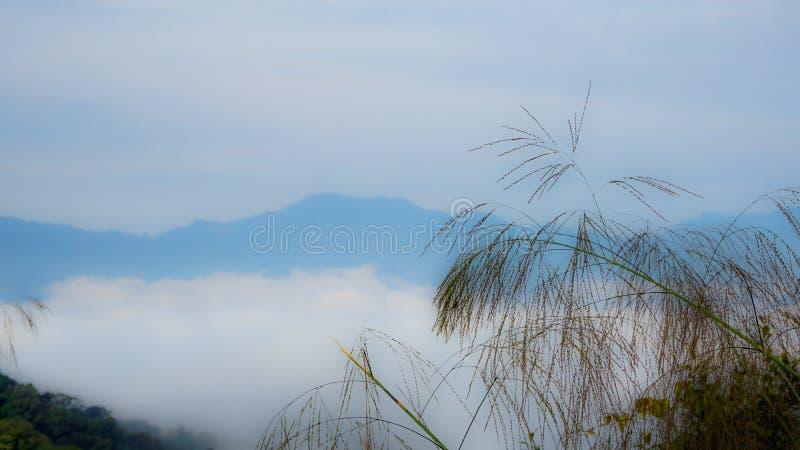 Opinião macia do sentimento da paisagem, da névoa, da nuvem e da montanha imagens de stock